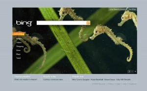 Page d'accueil de Microsoft Bing
